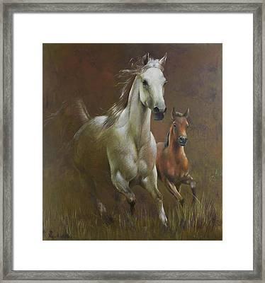 Gallop In The Eyelash Of The Morning Framed Print