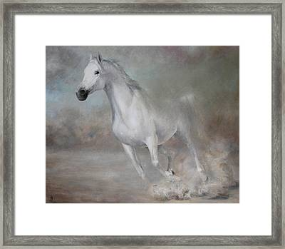 Gallop Framed Print