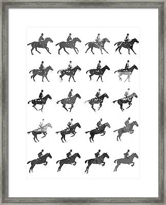 Galloping Gait Terrestrial Locomotion - Bw Framed Print by Aged Pixel