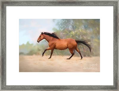 Galloping Thoroughbred Horse Framed Print by Michelle Wrighton