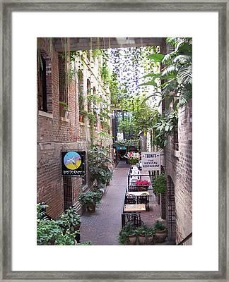 Gally Way Framed Print