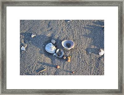 Galveston Tx 518 Framed Print