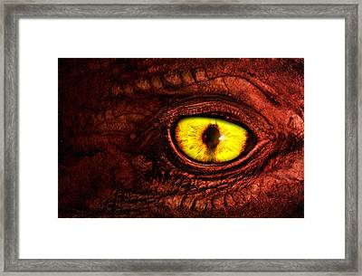 Dragon Framed Print by Joe Roberts
