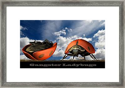 Gangster Ladybugs Nature Gone Mad Framed Print by Bob Orsillo