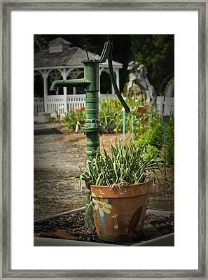 Garden 1 Framed Print by Arthur Guertin