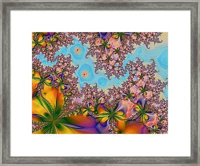 Garden 2 Framed Print by Alexandru Bucovineanu