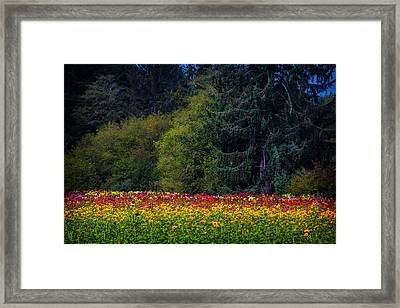 Garden And Forest Framed Print by Garry Gay