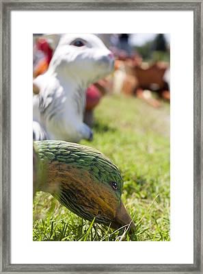 Garden Animals Framed Print by Boyan Dimitrov