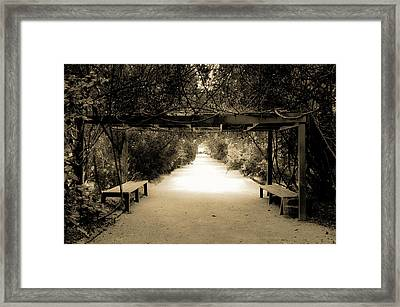 Garden Arbor In Sepia Framed Print by DigiArt Diaries by Vicky B Fuller