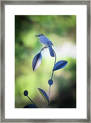 Garden Art Framed Print