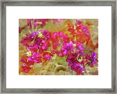 Garden Beauty Framed Print by Judi Bagwell