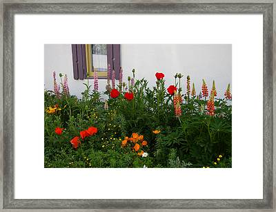 Garden Beauty Framed Print
