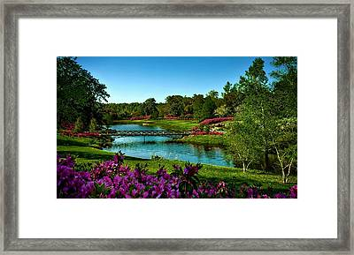 Garden Bridge Framed Print by Dawn Van Doorn