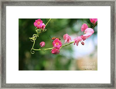 Framed Print featuring the photograph Garden Bug by Megan Dirsa-DuBois