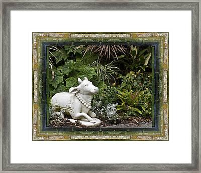Garden Bull Framed Print