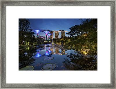 Framed Print featuring the photograph Garden By The Bay, Singapore by Pradeep Raja Prints