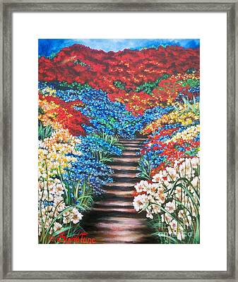 Red White And Blue Garden Cascade.               Flying Lamb Productions  Framed Print