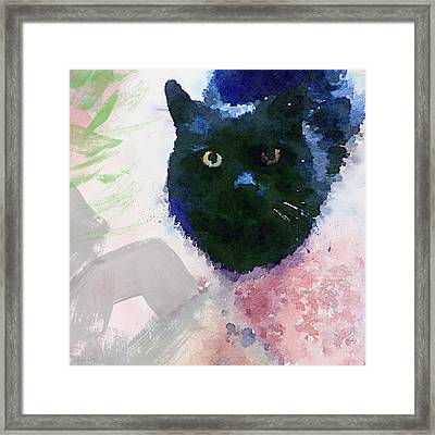 Garden Cat- Art By Linda Woods Framed Print