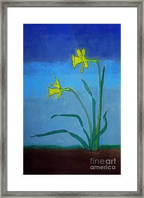 Garden Daffodils Framed Print by Norma Appleton