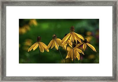 Garden Dancers Framed Print