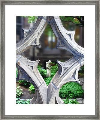 Garden Framed Print by Elizabeth Reynders