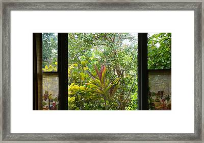 Garden Escape Framed Print by Kevin Smith