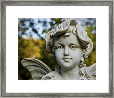 Garden Fairy Framed Print by Christopher Holmes