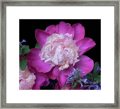 Garden Flowers Framed Print