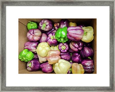 Garden Fresh Bell Peppers Framed Print by Kathleen K Parker