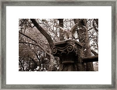 Framed Print featuring the photograph Garden Gargoyle  by Toni Hopper