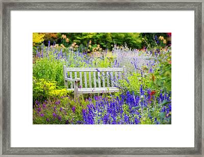 Garden Gifts Framed Print by Jessica Jenney