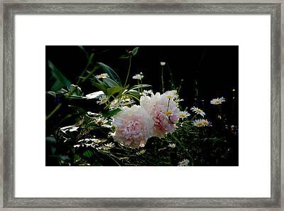 Garden Framed Print by Gillis Cone
