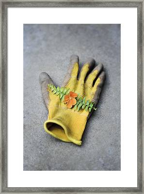 Garden Glove And Pansy Blossom2 Framed Print