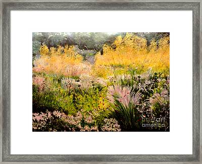 Garden In Northern Light Framed Print