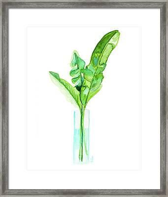 Garden Indoors Framed Print by Roleen Senic