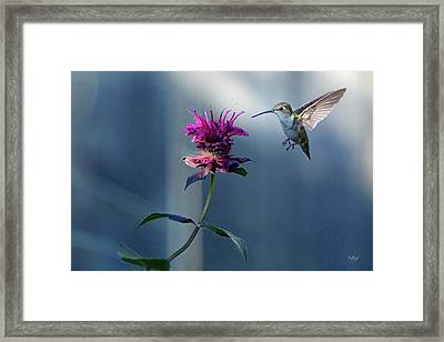Framed Print featuring the photograph Garden Jewelry by Everet Regal