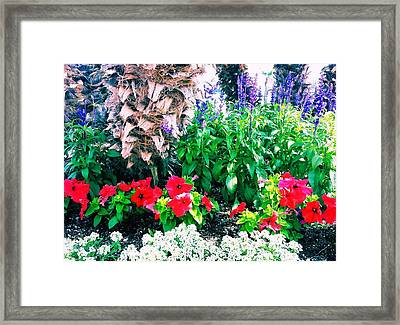 Garden Landscape 2 Version 1 Framed Print