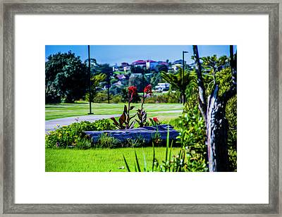 Garden Log Framed Print
