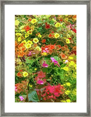 Garden Of Color Framed Print