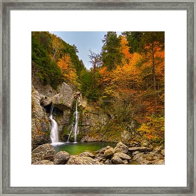 Garden Of Eden Framed Print