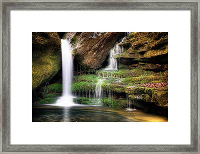 Garden Of Eden Framed Print by Tamyra Ayles