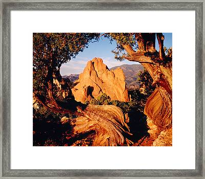 Garden Of The Gods Co Usa Framed Print by Panoramic Images
