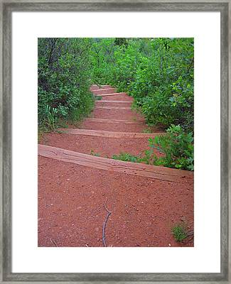 Garden Of The Gods Steps Framed Print