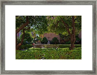 Garden Outside Malagas Cathedral Framed Print by Panoramic Images