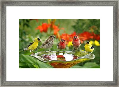 Garden Party Framed Print by Bill Pevlor
