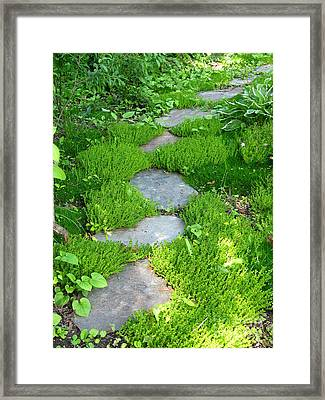 Garden Path Framed Print by Idaho Scenic Images Linda Lantzy