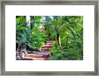 Framed Print featuring the photograph Garden Path by Jim Walls PhotoArtist