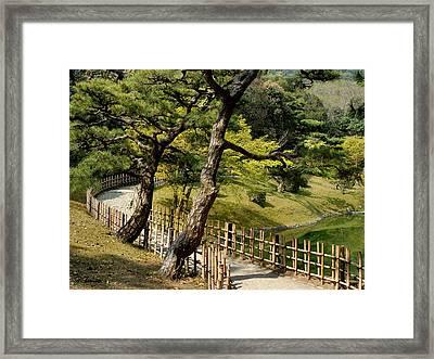 Garden Path Framed Print