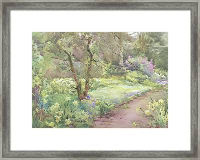 Garden Path Framed Print by Mildred Anne Butler