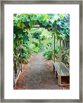 Garden Path Framed Print